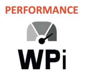 WPi Work Performance indicator